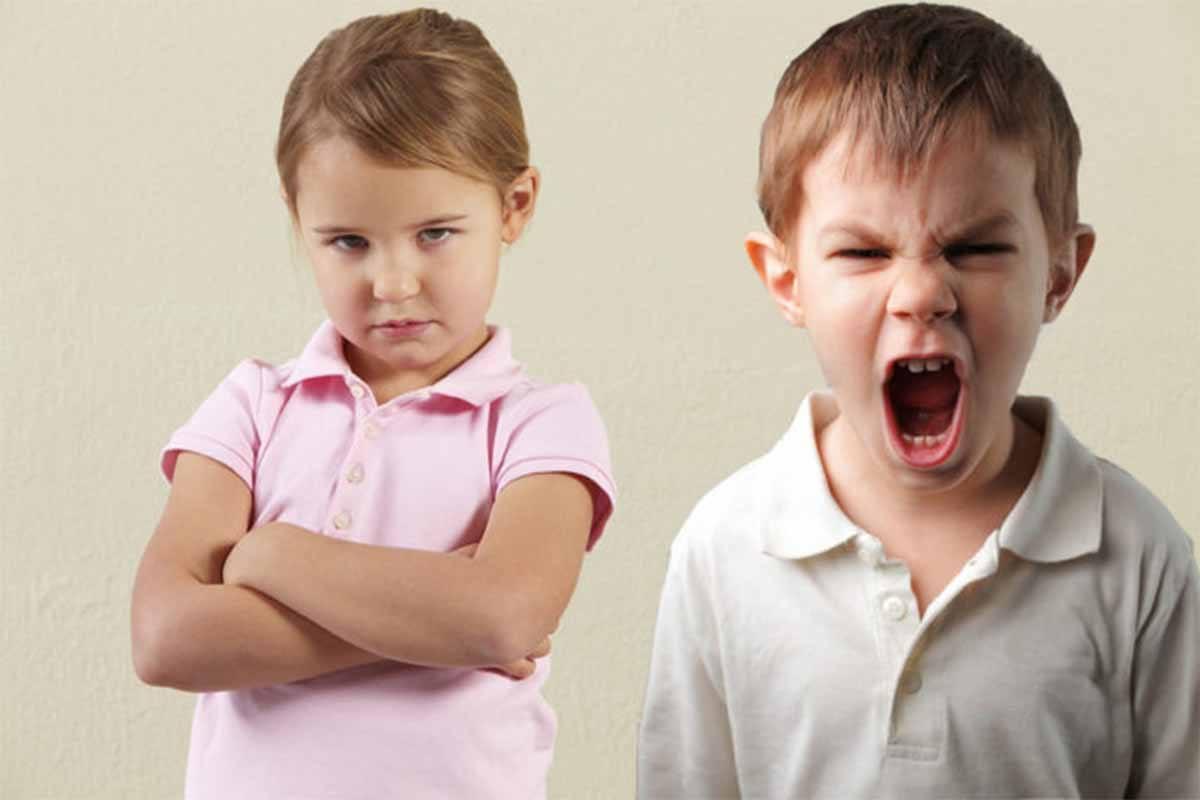 Öfkenin Yaşanması Değil, Kontrolünün Sağlanamaması Sakıncalıdır